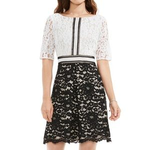 Vince Camuto lace colorblock shift dress 14